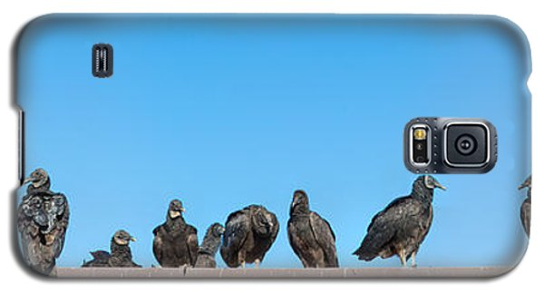Vultures On Anhinga Trail, Everglades Galaxy S5 Case