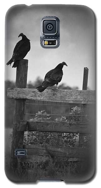Galaxy S5 Case featuring the photograph Vultures On Fence by Bradley R Youngberg