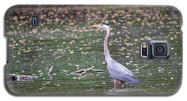 Galaxy S5 Case featuring the photograph Wading Crane by Susan  McMenamin