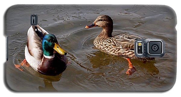 Wading Ducks Galaxy S5 Case