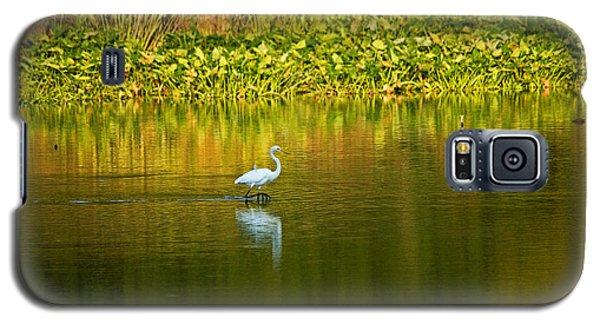 Wading Egret Galaxy S5 Case