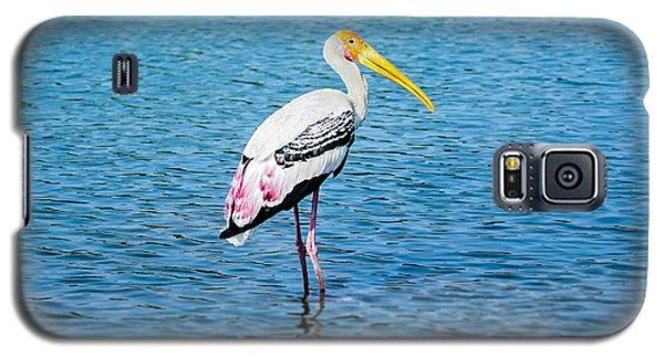 Wading Stork Galaxy S5 Case