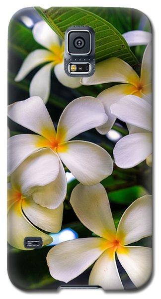 Wailea Plumerias Galaxy S5 Case