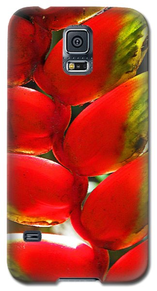 Waimea Flowers Iv Galaxy S5 Case