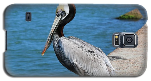 Galaxy S5 Case featuring the photograph Waiting For A Fish  by Christy Pooschke
