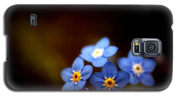 Waiting For The Light Galaxy S5 Case by Rachel Mirror