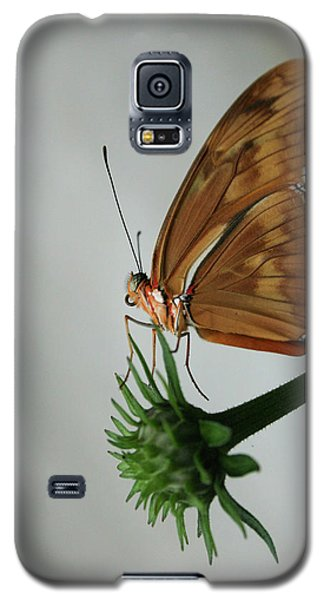 Galaxy S5 Case featuring the photograph  Butterfly Waiting On The Wind  by Cathy Harper