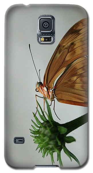 Butterfly Waiting On The Wind  Galaxy S5 Case