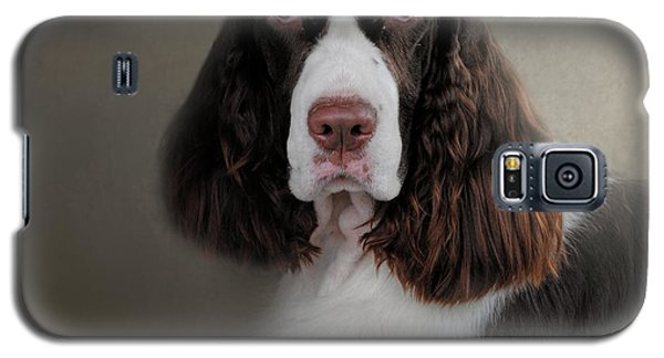 Waiting Patiently - English Springer Spaniel Galaxy S5 Case