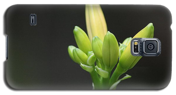 Waiting To Bloom Galaxy S5 Case by Barbara Bardzik