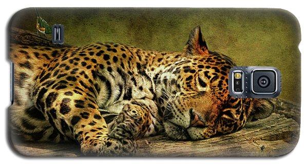 Wake Up Sleepyhead Galaxy S5 Case