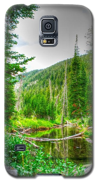 Walk In The Woods Galaxy S5 Case by Kevin Bone