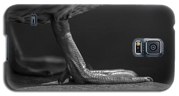 Walk Like A Duck Galaxy S5 Case