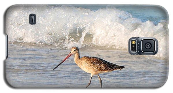 Walk This Way Galaxy S5 Case by Margie Amberge