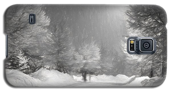 Winter Walk Galaxy S5 Case by Les Palenik