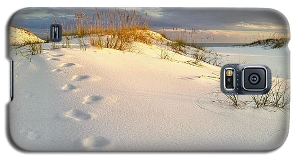 Galaxy S5 Case featuring the photograph Walking In Destin by JC Findley