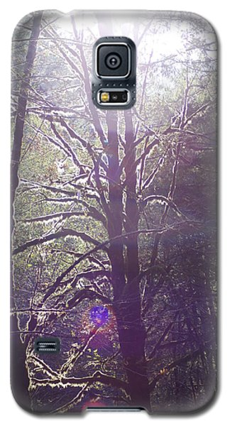 Walking In The Woods Galaxy S5 Case