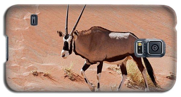 Ostrich Galaxy S5 Case - Walking Male Oryx (oryx Gazella by Jaynes Gallery