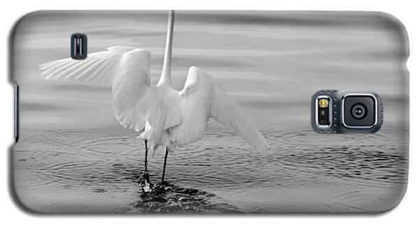 Walking On Water Galaxy S5 Case by Daniel Woodrum