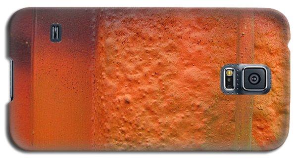 Wall Colour Galaxy S5 Case