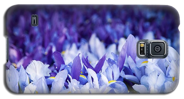 Wall Of Purple Iris Galaxy S5 Case