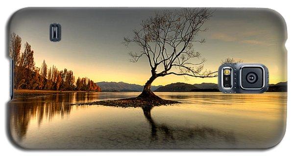 Wanaka - That Tree 1 Galaxy S5 Case
