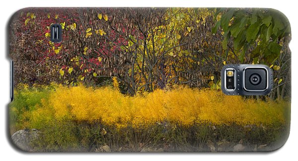 Wander Into Fall Galaxy S5 Case by Teresa Schomig