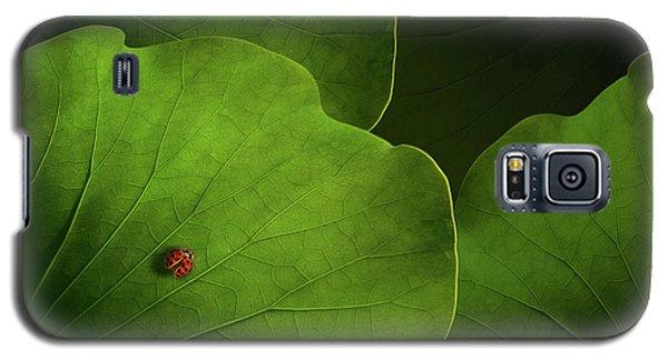 Ladybug Galaxy S5 Case - Wanderlust by Heather Bonadio