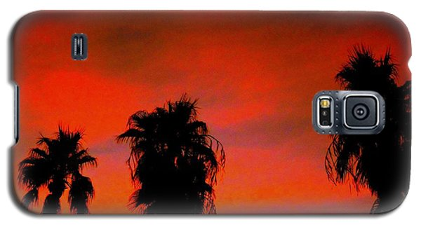Wang's Sunsets 3 Galaxy S5 Case