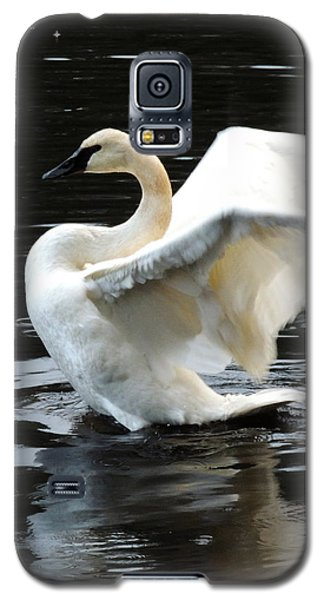 Galaxy S5 Case featuring the photograph Ward Lake Swan by Karen Horn