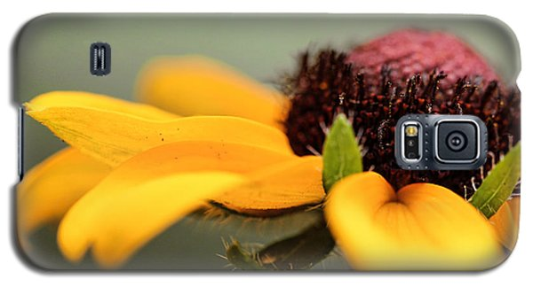 Warm Rudbeckia Galaxy S5 Case