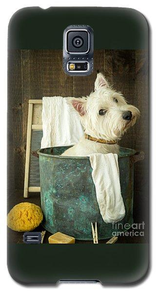Wash Day Galaxy S5 Case by Edward Fielding