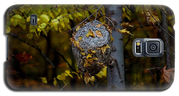 Galaxy S5 Case featuring the photograph Wasp's Nest by Jerome Lynch