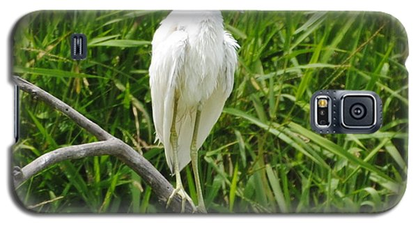Watchful Heron Galaxy S5 Case