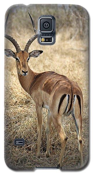 Watchful Impala Galaxy S5 Case
