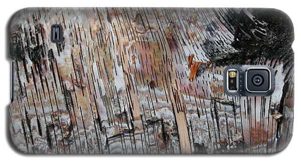 Galaxy S5 Case featuring the photograph Water And Birch by Dylan Punke