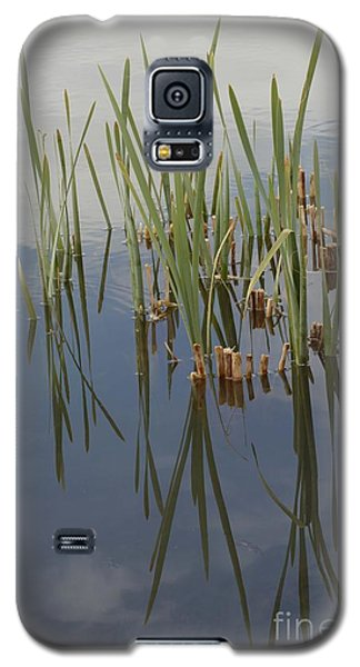 Reflection Galaxy S5 Case