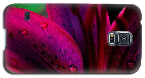 Water-drops On The Petal Galaxy S5 Case by Shelby  Young