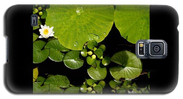 Water Drops Bristol Rhode Island Galaxy S5 Case by Tom Prendergast