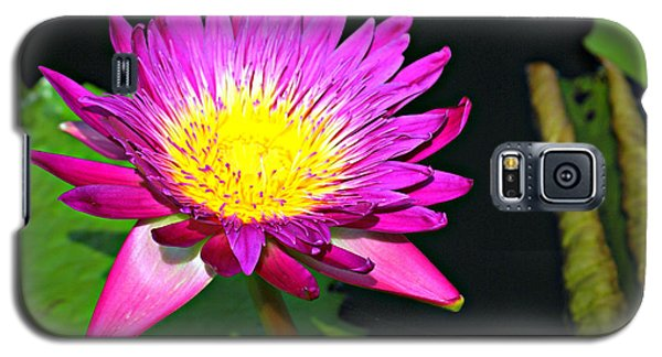 Galaxy S5 Case featuring the photograph Water Flower 10089 by Marty Koch
