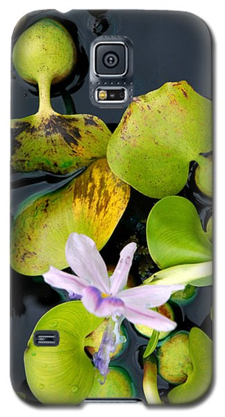 Galaxy S5 Case featuring the photograph Water Flower by Allen Carroll