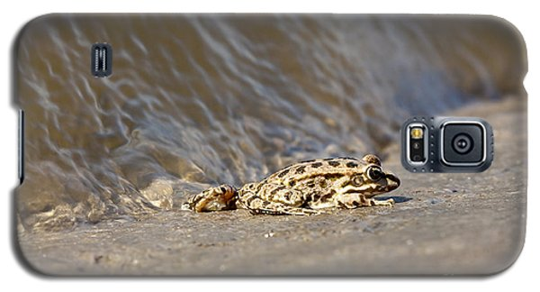 Water Frog Close Up  Galaxy S5 Case by Odon Czintos