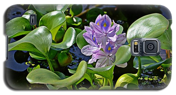Water Hyacinth Galaxy S5 Case