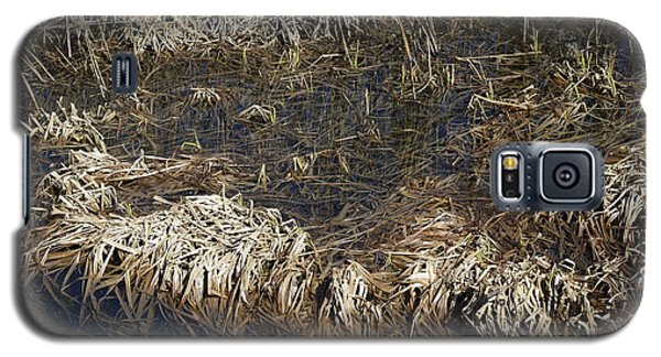 Dried Grass In The Water Galaxy S5 Case by Teo SITCHET-KANDA