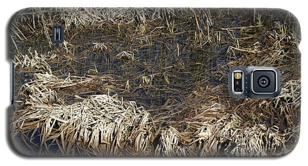 Dried Grass In The Water Galaxy S5 Case