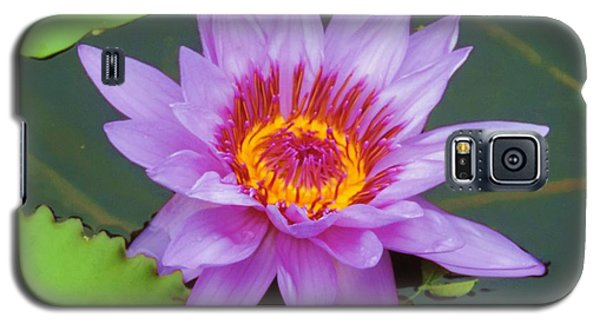 Water Lilies 005 Galaxy S5 Case