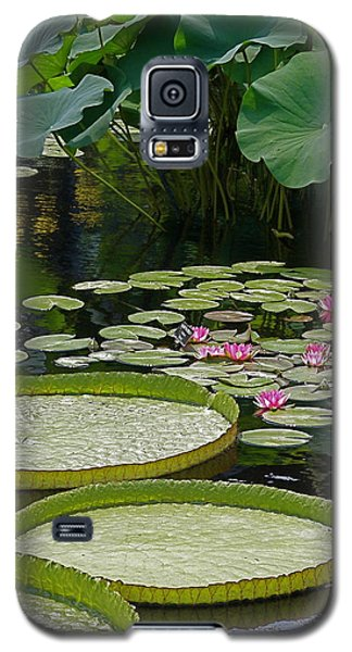 Galaxy S5 Case featuring the photograph Water Lilies And Platters And Lotus Leaves by Byron Varvarigos