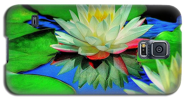 Water Lilly Galaxy S5 Case by Ed Roberts