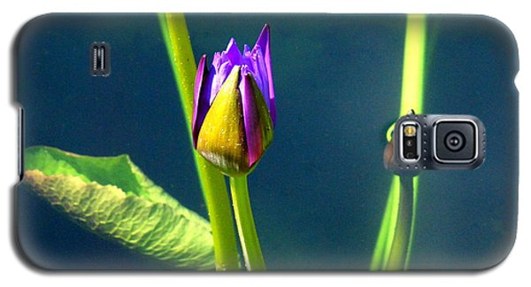 Water Lily 005 Galaxy S5 Case