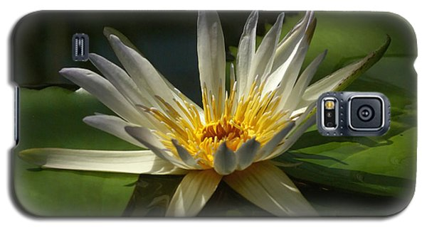Water Lily 2 Galaxy S5 Case